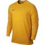 Nike Keepersshirt Park Goalie II Gold